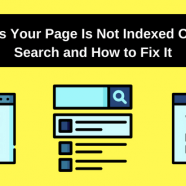 5 Reasons Your Page Is Not Indexed On Google Search and How to Fix It