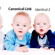What Are Canonical Links And Why You Should Canonicalize Your URL