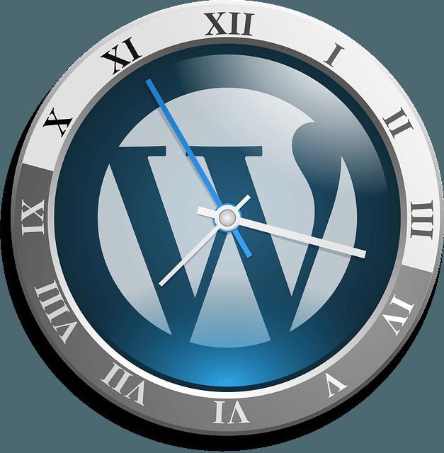 Things to Keep in Mind when Choosing WordPress Plugins to Use